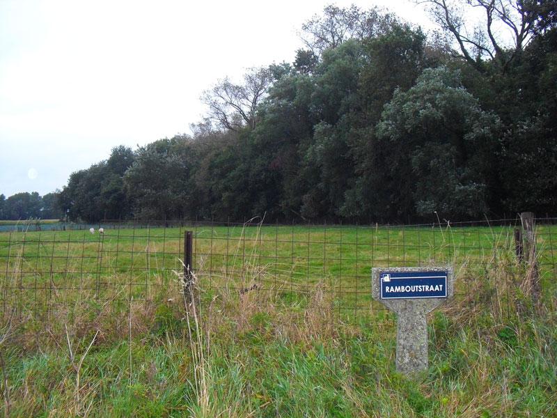 Gaat vladsloos bos open of blijft het dicht nieuws uit for Bos te koop